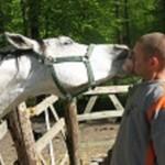 Ludzie i Konie